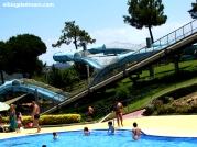 Family Lagoon